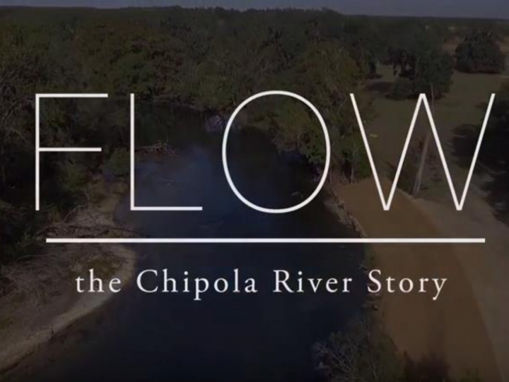 The Florida Fish & Wildlife Conservation Commission Highlights Chipola River in New Video